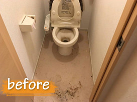 before_toilet_1